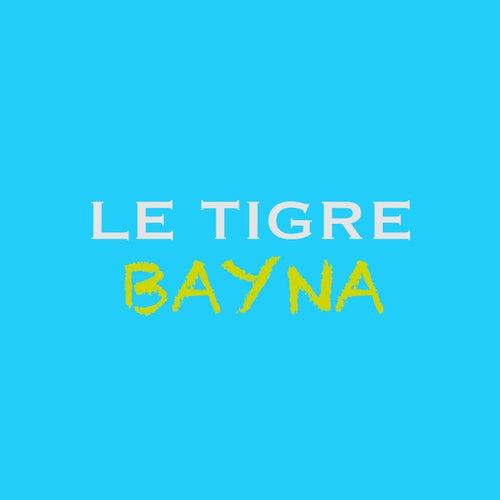 Bayna von Le Tigre
