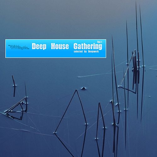 Deep House Gathering (Selected By Deepwerk) de Various Artists