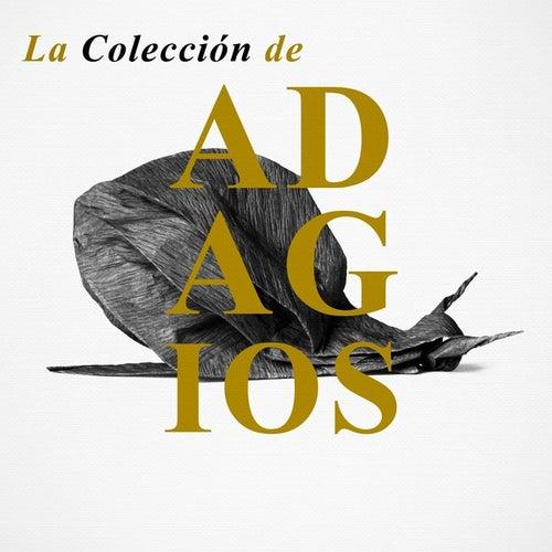 La Colección de Adagios de Various Artists