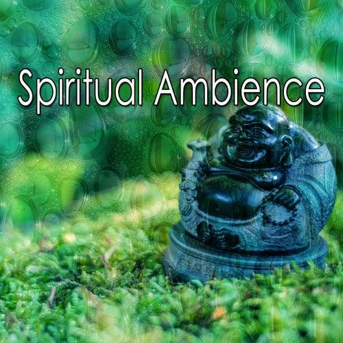 Spiritual Ambience de Meditación Música Ambiente