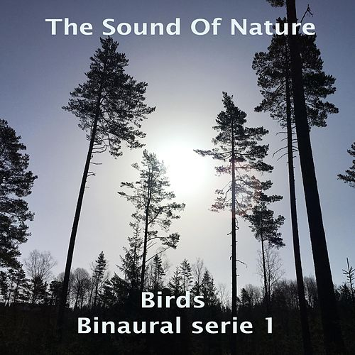 Birds - Binaural Serie 1 di The Sound of Nature