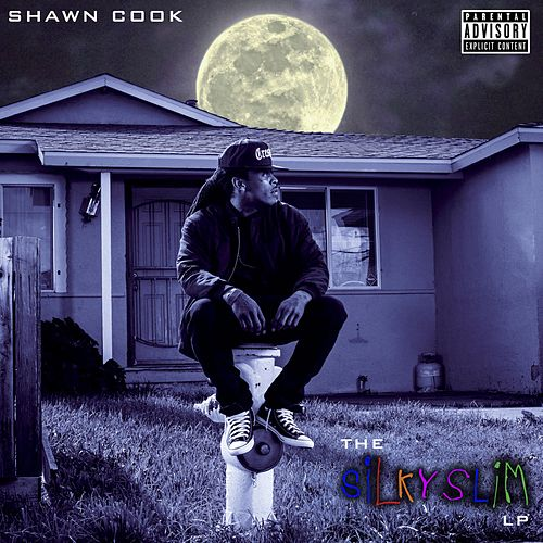 The Silky Slim LP by Shawn Cook
