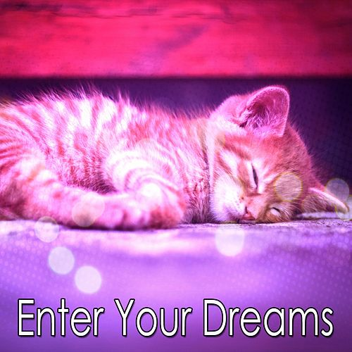 Enter Your Dreams von Rockabye Lullaby