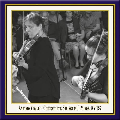 Vivaldi: Concerto for Strings in G Minor, RV 157 (Live) by Lautten-Compagney