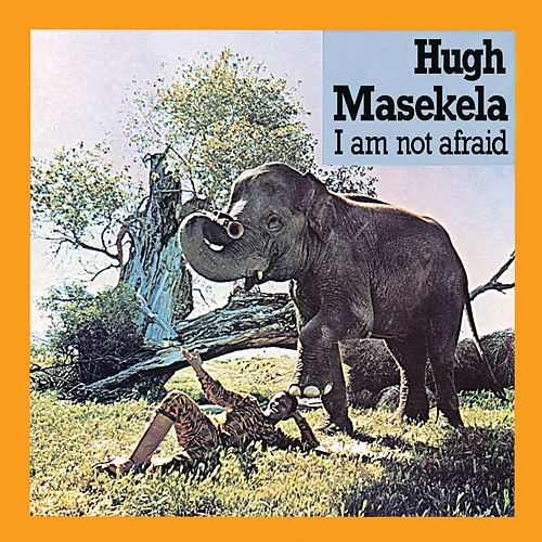 I Am Not Afraid by Hugh Masekela