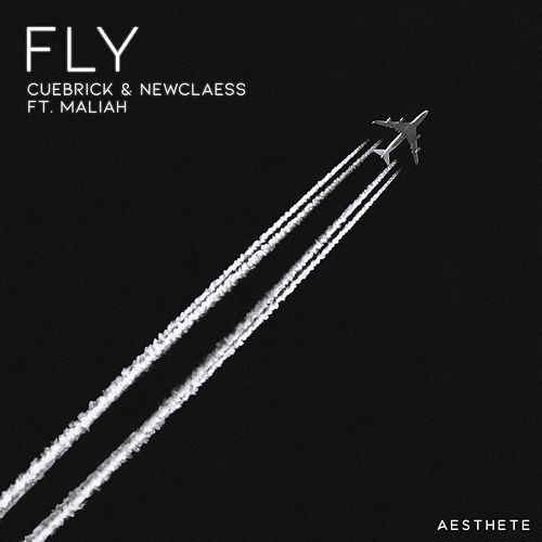 Fly by Cuebrick & Newclaess