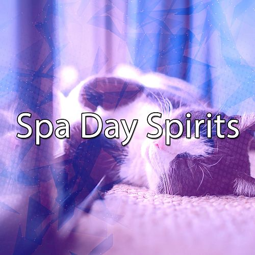 Spa Day Spirits von Best Relaxing SPA Music