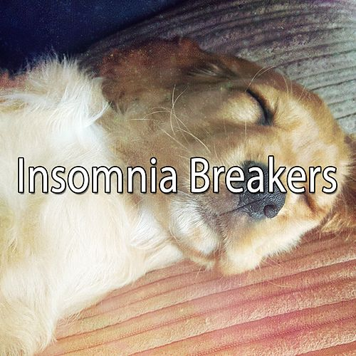 Insomnia Breakers von Rockabye Lullaby