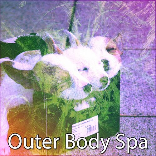 Outer Body Spa von Best Relaxing SPA Music
