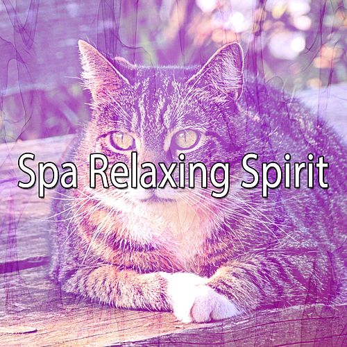 Spa Relaxing Spirit by Relaxing Spa Music