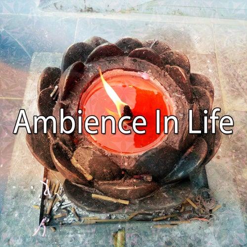 Ambience In Life de Meditación Música Ambiente