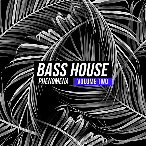Bass House Phenomena, Vol. 2 di Various Artists