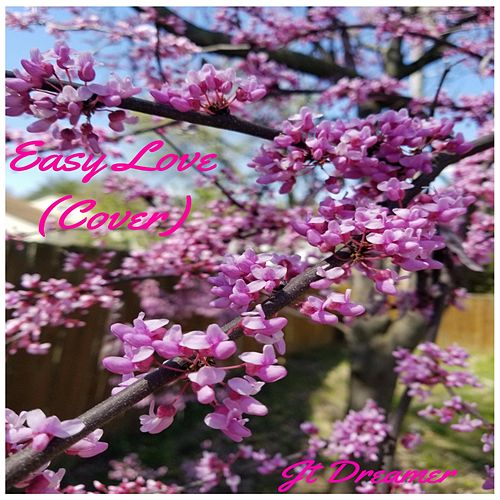 Easy Love de Jt Dreamer