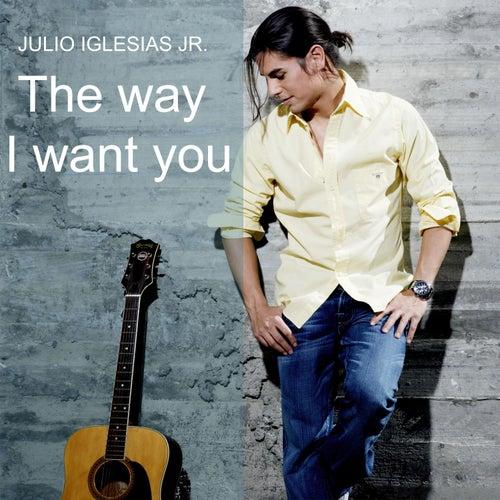 The Way I Want You de Julio Iglesias, Jr.
