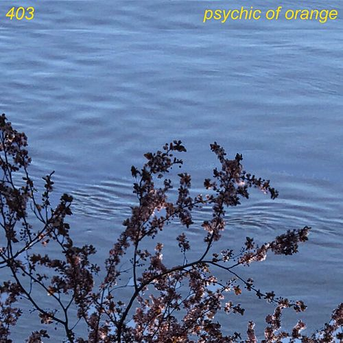 403 de Psychic Of Orange