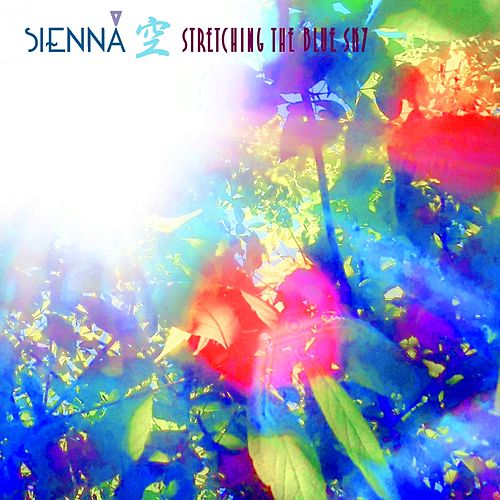 Stretching The Blue Sky (Reassess Remix) by Sienná