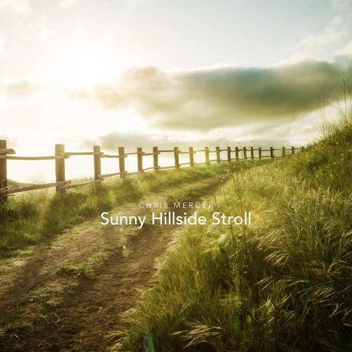 Sunny Hillside Stroll by Chris Mercer