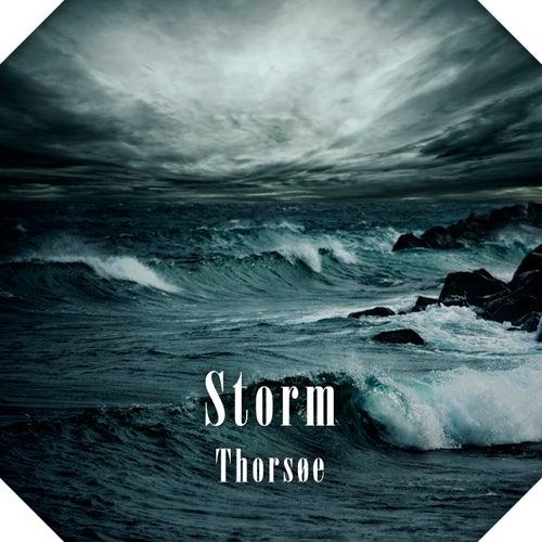 Storm de Thorsøe