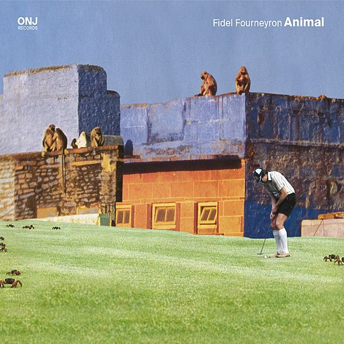 Animal de Fidel Fourneyron