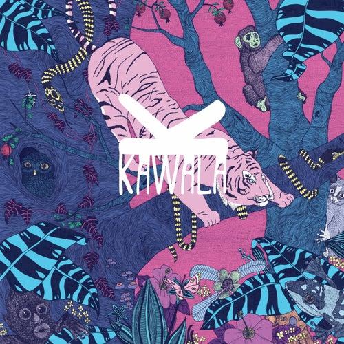 D.I.L.Y.D. by Kawala
