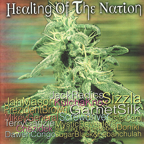 Healing Of The Nation by Various Artists