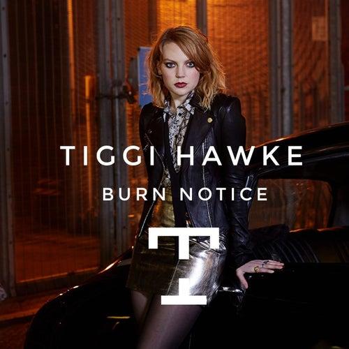 Burn Notice by Tiggi Hawke