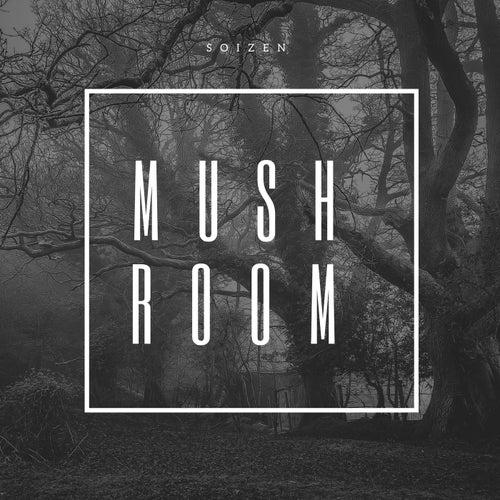 Mushroom by Soizen