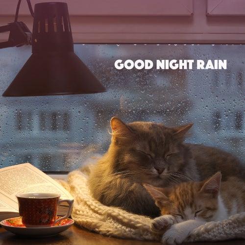 Good Night Rain by Various Artists