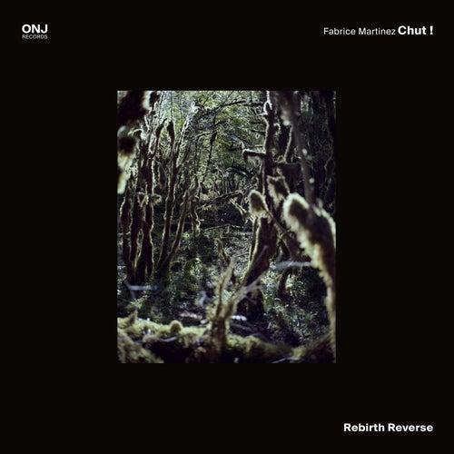 Rebirth Reverse by Fabrice Martinez Chut !