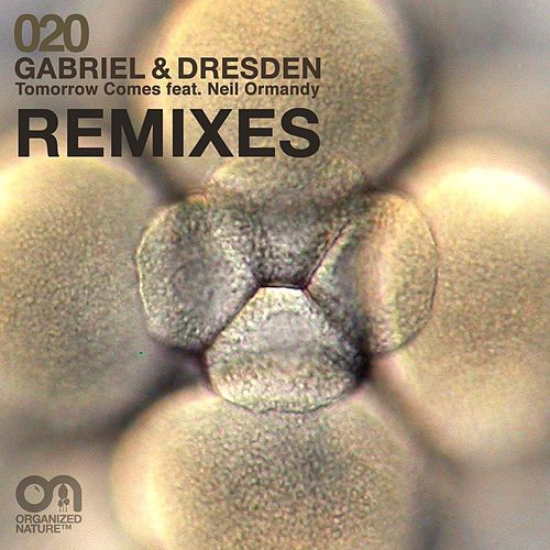 Tomorrow Comes (Remixes) de Gabriel & Dresden