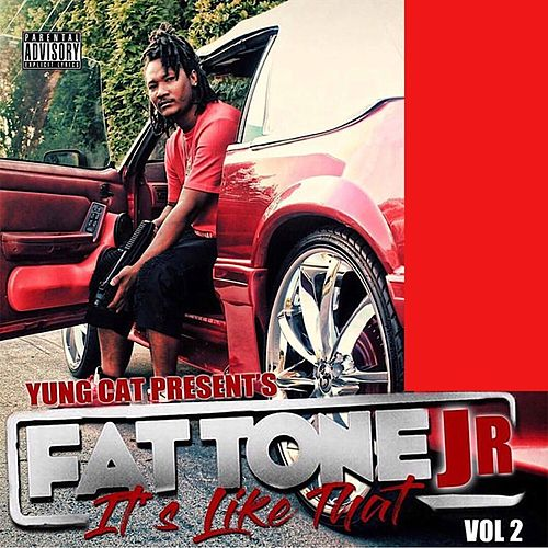 Fat Tone Jr It's Like That, Vol. 2 by Yung Cat