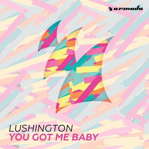 You Got Me Baby by Lushington