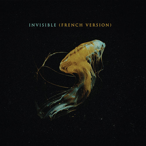 Invisible (French Version) von Story Untold