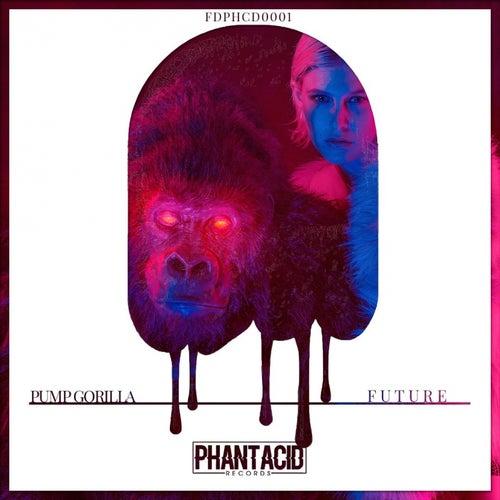 Future by Pump Gorilla