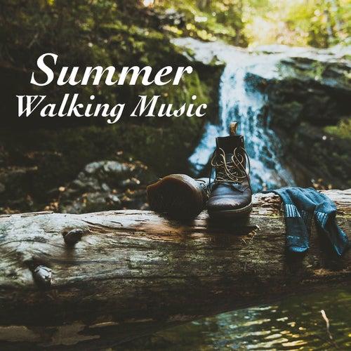 Summer Walking Music de Various Artists