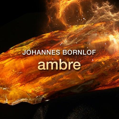 Ambre by Johannes Bornlof