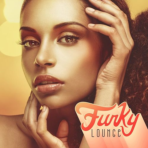 Funky Lounge von Various Artists