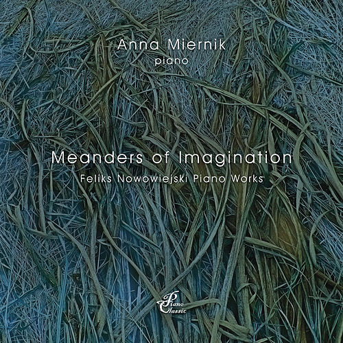 Meanders of Imagination by Anna Miernik