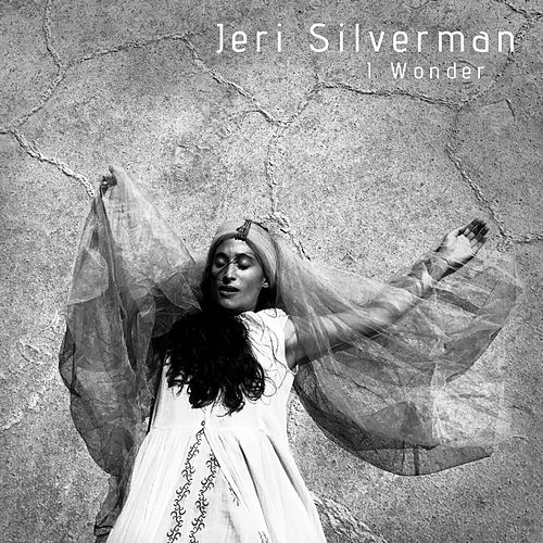 I Wonder by Jeri Silverman