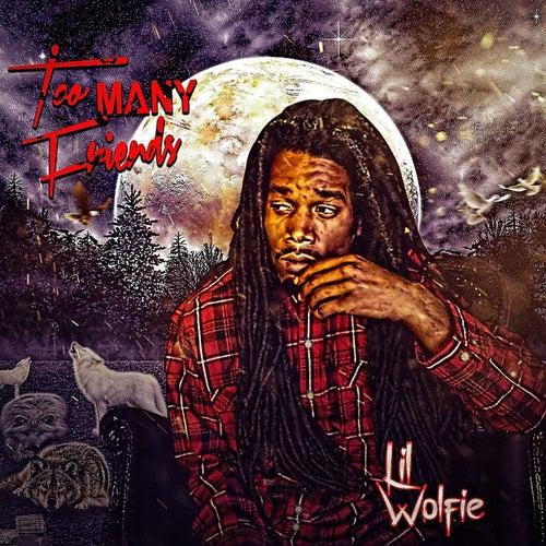 Too Many Friends de Lil Wolfie