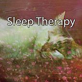 Sleep Therapy by Sleepicious