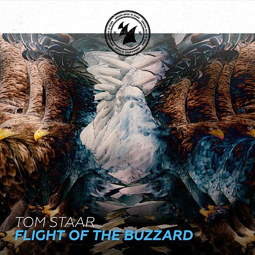 Flight Of The Buzzard von Tom Staar