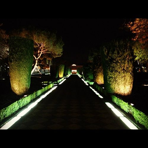 Paseo Nocturno von Astre