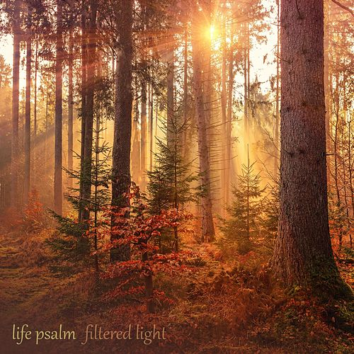 Life Psalm von Filtered Light