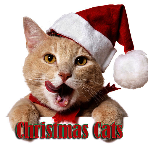 Christmas Cats by Christmas Songs