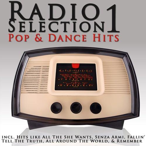 Radio Selection - Pop & Dance Hits de Various Artists