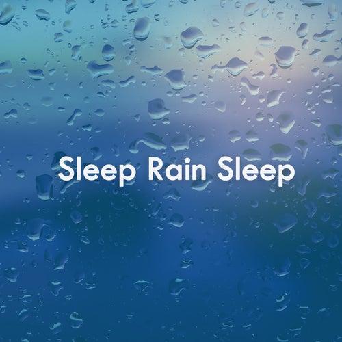 Sleep Rain Sleep de Various Artists