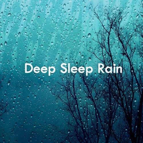 Deep Sleep Rain de Various Artists