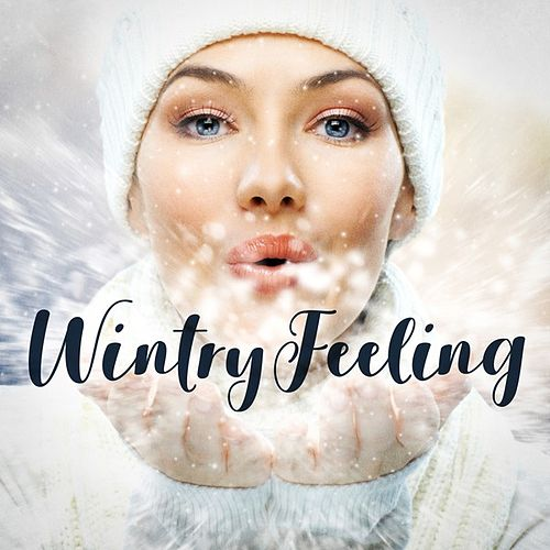 Wintry Feeling de Various Artists