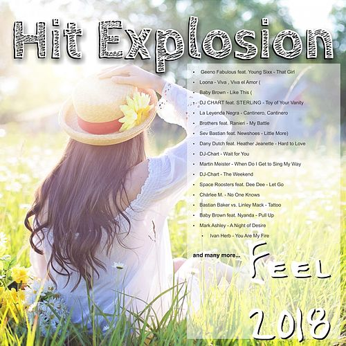 Hit Explosion Feel 2018 de Various Artists